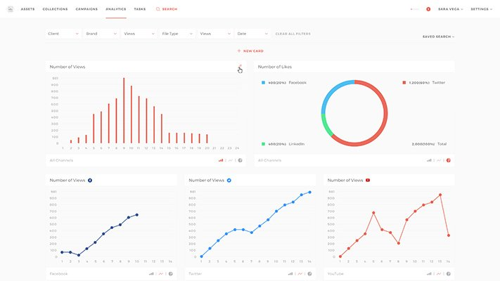 Social media campaigns analytics with Evolphin