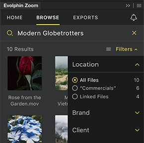 Assets management with Evolphin Zoom