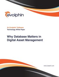 Why Database Matters in Digital Asset Management